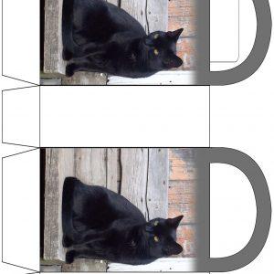 Black Cat Party Bag
