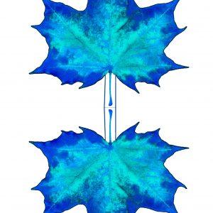 Pritable blue paper maple leaf