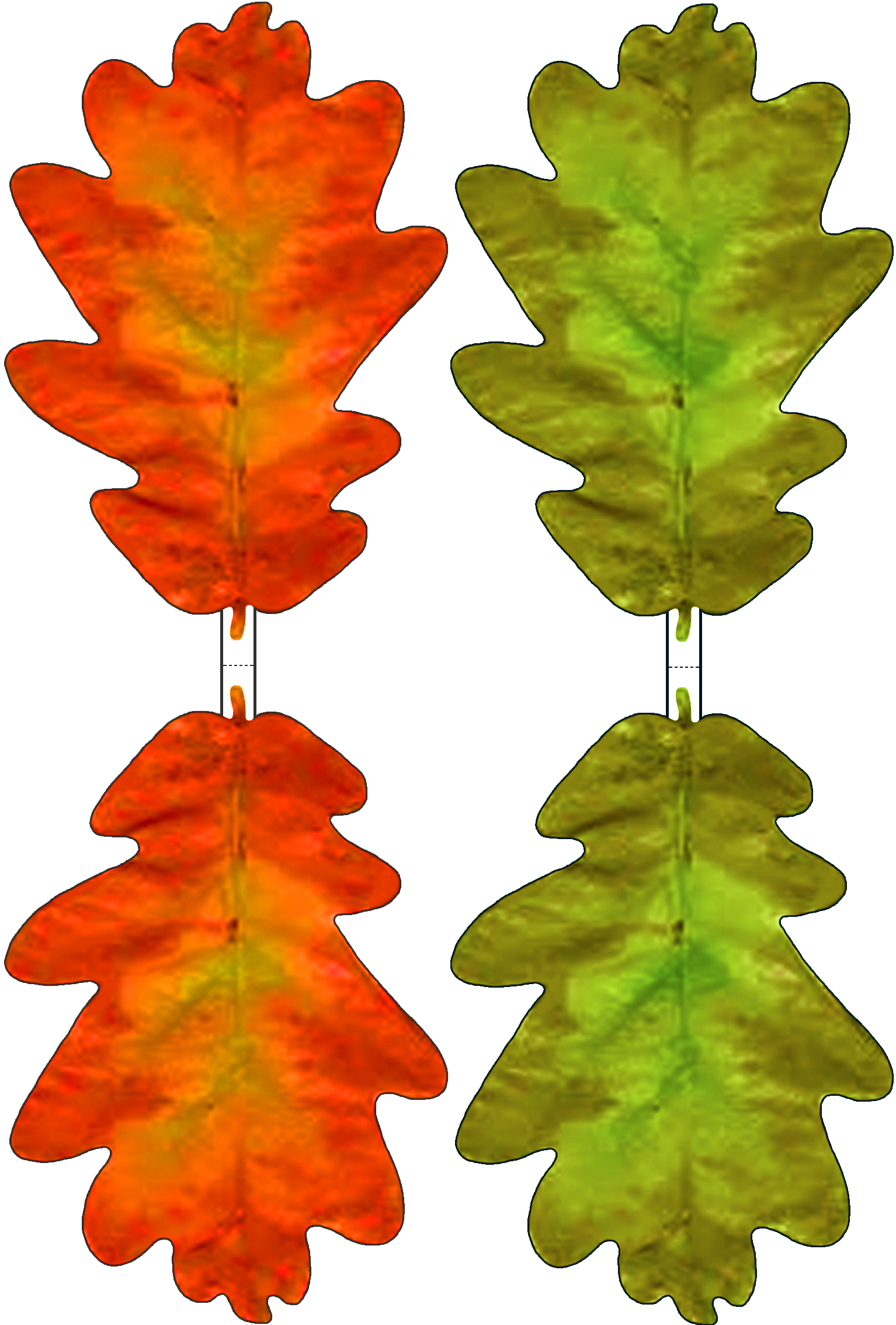 Green and red paper oak leaf decoration rooftop post