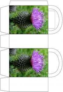 Scottish Thistle Party Bag - Colour