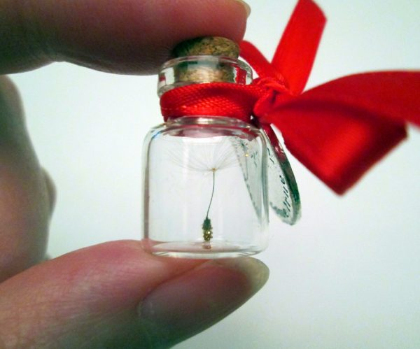 Wish in a Bottle