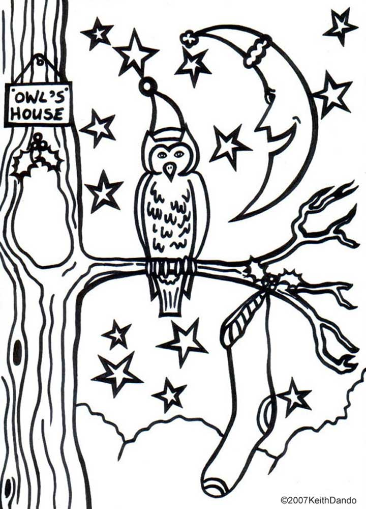 Printable Colouring Christmas Eve Owl Rooftop Post