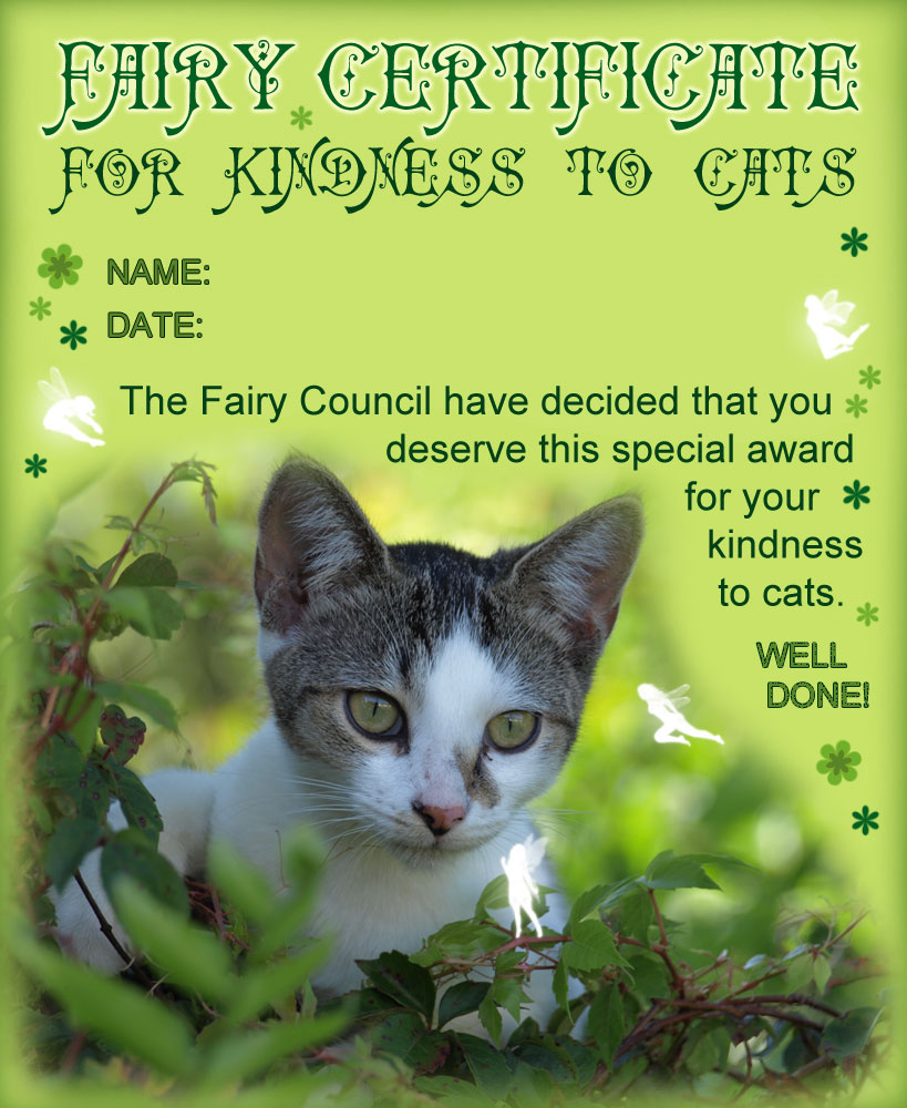 A certificate from the fairies for being kind to cats