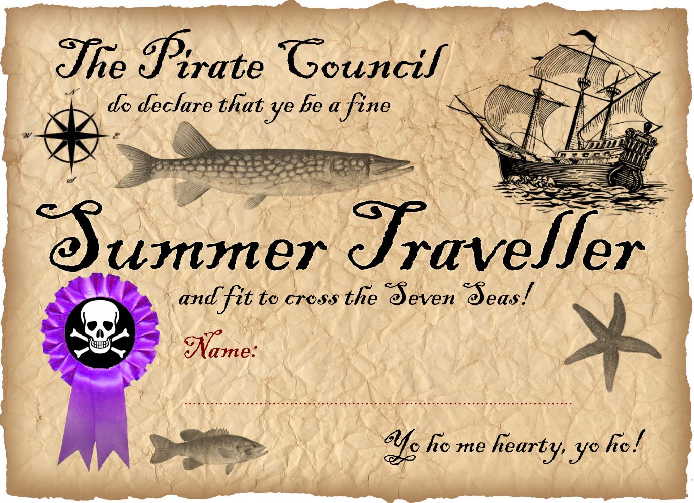 Summer Traveller Pirate Certificate | Rooftop Post Printables
