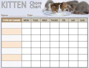 Free printable kitten chore chart for kids