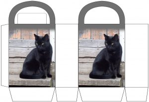 Black Cat Party Bag