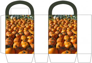 Pumpkin Patch Party Bag
