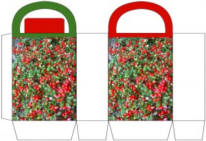 Red Berries Party Bag