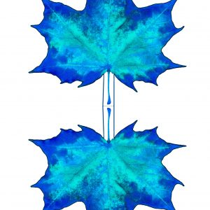 Pritable blue paper maple leaf