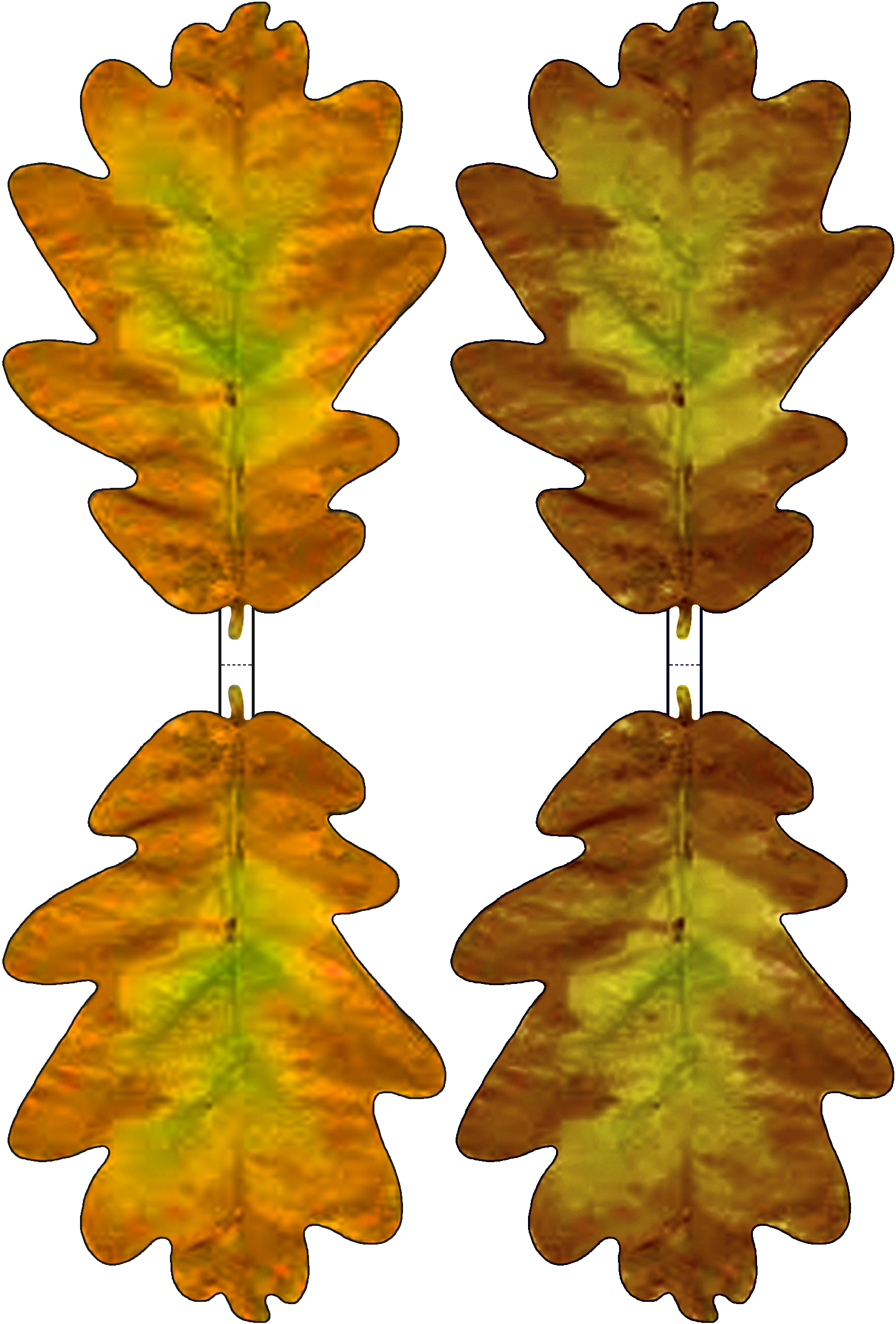 brown and yellow paper oak leaf decoration