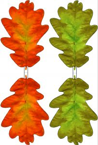 Printable green and red paper oak leaves