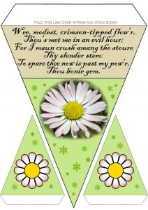 Burns Supper Bunting: Daisy