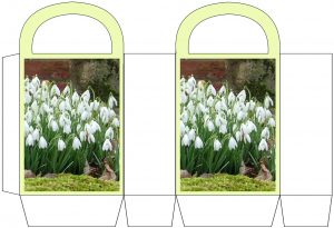 Printable snowdrop party bag