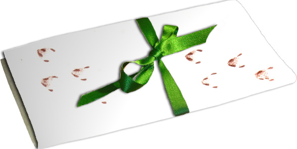 eaterr-letter-with-green-ribbon