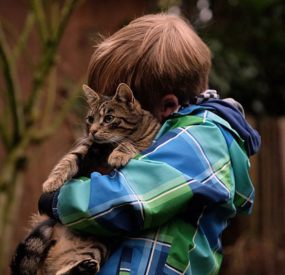 Little boy with his pet cat
