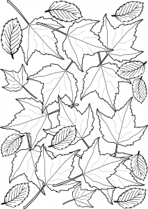 Printable colouring page of utumn leaves