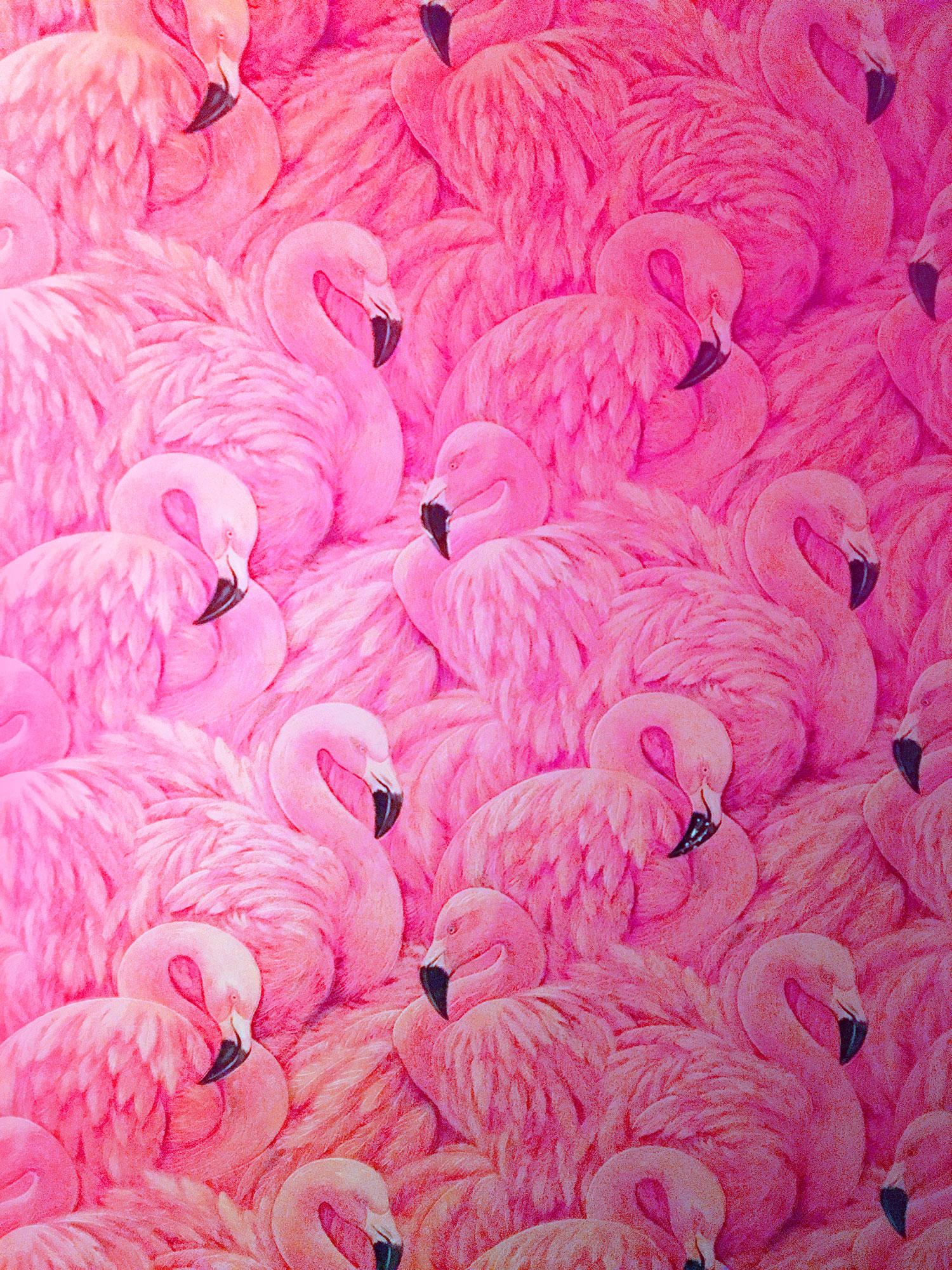 flamingo essay Review essay naomi klein, no logo: taking  no logo: taking aim at the brand  bullies, by naomi klein, london, flamingo, 2000  490 pp, isbn 0-00-255919-.