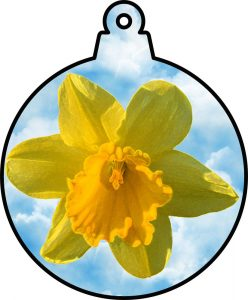 Printable hanging ornament of a daffodil against a blue sky