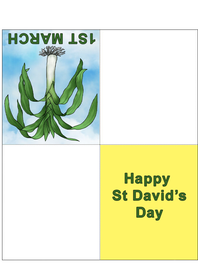 Four fold card bearing a picture of a Welsh leek, to print and fold for St David's Day