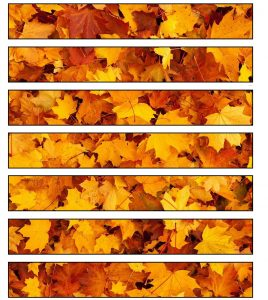 Printable paper chain strips of golden autumn leaves