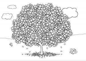 Printable colouring picture of a blossom filled tree and some butterflies