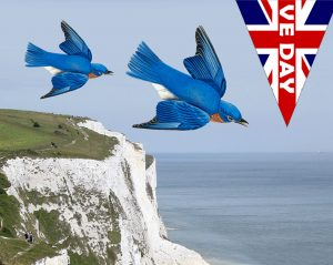 VE Day poster inspired by Vera Lynn's rendition of the famous song The White Cliffs of Dover