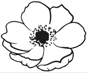 A free printable poppy to colour in for remembrance day.