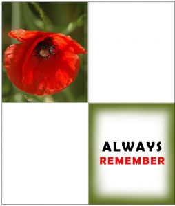 A printable four-fold card for Remembrance Day with a poppy on the front and bearing the message Always Remeber